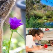 Tel Aviv's Ecological Oasis: The Yehuda Naftali Botanic Garden at TAU