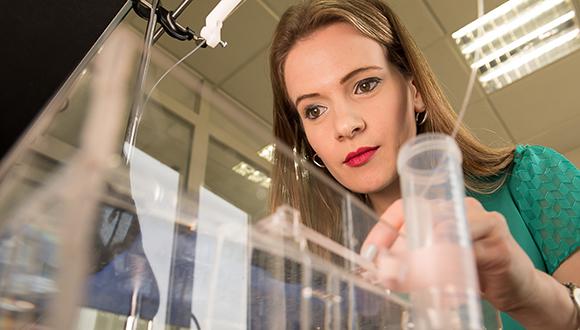 TAU-led Team Destroys Cancer Cells with Ultrasound