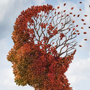 TAU study: protein fragments may protect against Alzheimer's