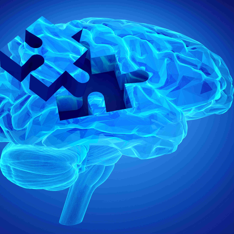 TAU Alzheimer's Research Targets Major Genetic Risk Factor