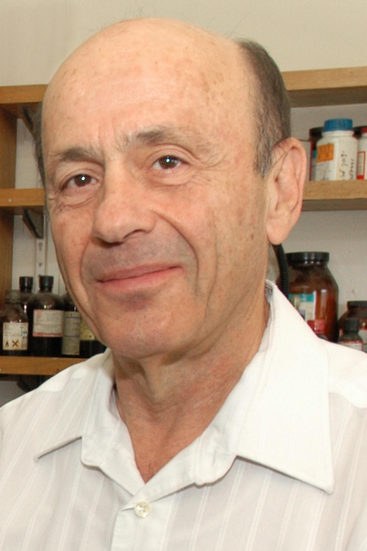 Prof. Emanuel Peled