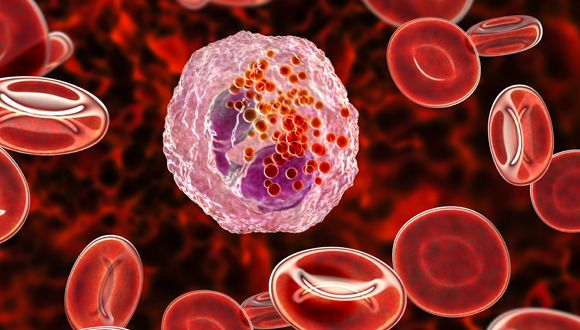Recruiting 'Fighting Cells' to Destroy Tumors