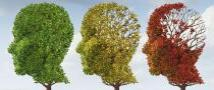 Effects of Alzheimer's may be reversed by enzyme treatment