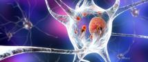 New system for detecting Parkinson's early