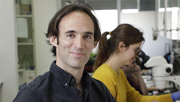 Prof. Oded Rechavi. Photo: Yehonatan Zur.