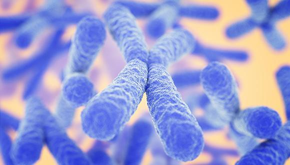 Genetic Memory of Starvation May Curtail Lifespan of Men