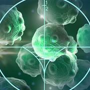 Smart probe detecting cancer cells may improve survival rates