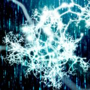 Restoring Order in the Brain